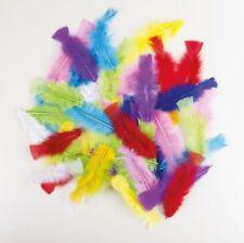 Lot de Plumes Multicolores sachet 50 mardi gras indien deguisement accessorie