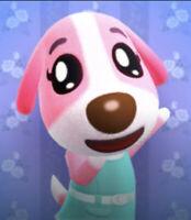 Animal Crossing New Horizons 💜Bewohner Rosi / Cookie💜 auszugsbereit
