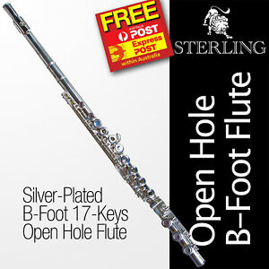 Silver-Plated B-Foot OHB  Flute • STERLING Open Hole B • BRAND NEW •Free Express