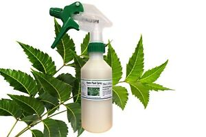 Neem Oil Plant Spray 250ml/ 8.79 fl ozs. Organic and Natural