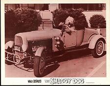 THE SHAGGY DOG movie lobby HOT ROD ROADSTER original DISNEY 11X14 card