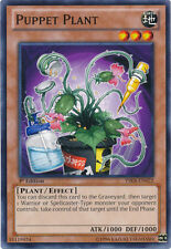 YuGiOh Puppet Plant - YSKR-EN022 - Common - 1st Edition Near Mint