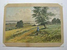 RARE - AJ FAAS Original Watercolor late 19th Century  Early 20th Century Antique