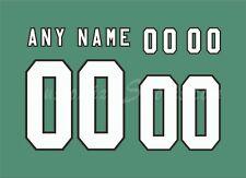 Saskatchewan Roughriders Football Number kit for Green Jersey