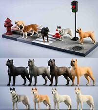 JXK 1/12 Husky Cane Corso Rottweiler Bulldog Pet Dog Scene Figure Animal Toys