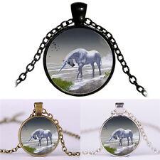 Einhorn Zeit Pferde Cabochon Glas Anhänger Halskette Pullover KetteHalskette SH