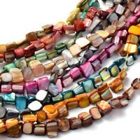 10 Strds Colorful Natural Seashell Chip Beads Irregular Loose Bead Craft 8x6~8mm