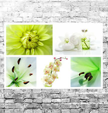 STUNNING GREEN FLORAL COLLAGE CANVAS #1 QUALITY FRAMED WALL ART BOX CANVAS A1