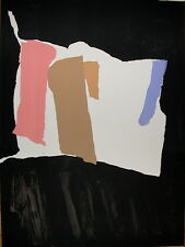 Pierre PALLUT lithographie 1972 signée Art Abstrait Abstraction Lyrique