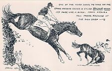 DENNY CARD  STEEPLECHASE GRAND NATIONAL HORSE POSTCARD PROPERTY OF Wesley Dennis