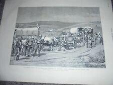 Boer War survivors of Bronker's Spruit 1881 print ref AN