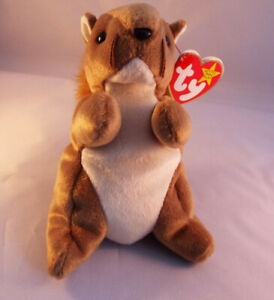 TY BEANIE BABY  NUTS The Squirel -  MINT - RETIRED Vintage 1996 WITH TAGS