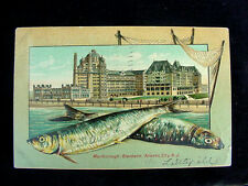 1907 Fish Border Hotel Atlantic City NJ embossed post card