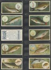 More details for full set, wills, fish & bait 1910