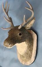 Deer Head Buck Wall Mount Taxidermy Replica Raz Imports Glittered Fur Antlers