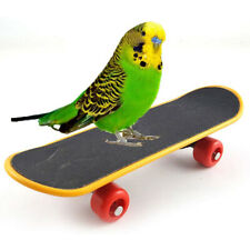 New listing Bird Parrot Intelligence Toy Mini Training Skateboard for Parrot Budgie Toy Zhf