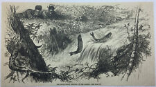1884 magazine engraving ~ Brook-Trout Leaping Up The Rapids