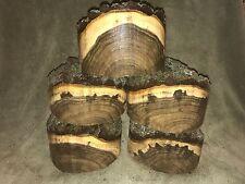 "FREE SHIP Natural Edge Black Walnut Turning  Bowl Blank Lathe 7x 4-5"" thick 1 pc"