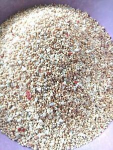 AquaTees BALI SAND White Marine & Freshwater sand-bed Aquarium Hermit Coral 20kg