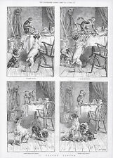 MONKEY THROWS PEPPER ON CIRCUS DOGS SO HE CAN STEAL FOOD 1889 ANTIQUE DOG PRINT