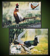 MAXIMUM CARDS BIRDS PHEASANTS CHINESE COOPER PHEASANT , COMMON PHEASANT