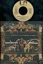 Nitty Gritty Dirt Band 45 Jambalaya W/ PIC SLEEVE MINT