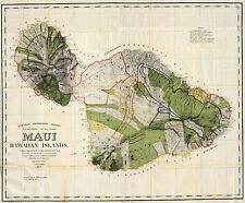 1906 Map Maui Hawaiian Island Wall Art Poster Print Decor Vintage History