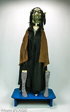 Witch Troll Costume Unique 9 Piece Costume With Hand Crafted Leather Mask Large