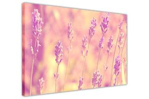 PINK PURPLE LAVENDER FLOWERS CANVAS PICTURES ART PRINTS WALL POSTERS FLORAL ART