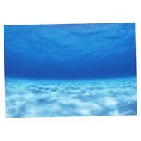 3D Seawater Picture Acquario sfondo Poster PVC   Tank Decor Paesaggio