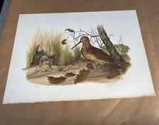 Vintage Audubon Lithograph JEROME TROLLIET 1973 Hand Signed Art Print Vintage
