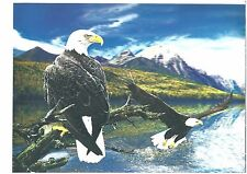 bald eagle American view 3D Lenticular Holographic Stereoscopic Picture Wall Art