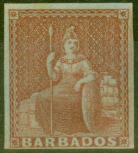 Barbados 1855 (4d) Brownish Red SG5 Fine & Fresh Unused