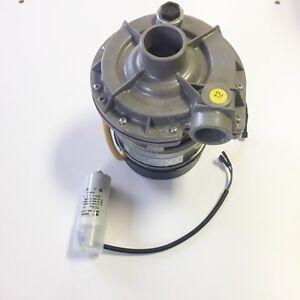 3102276 WASH PUMP 230V 50HZ WINTERHALTER GS28 GS29 CATERING SPARES PARTS