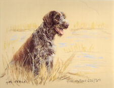 GERMAN WIREHAIRED POINTER GWP DOG FINE ART LIMITED EDITION PRINT