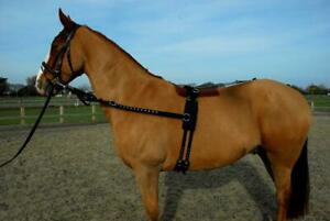 Rhinegold Horse Training and Breaking Roller/Side Rein Set in Black