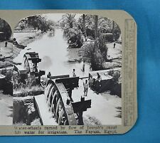 Stereoview Photo Egypt Water-wheels Turned By Joseph's Canal The Fayum Realistic