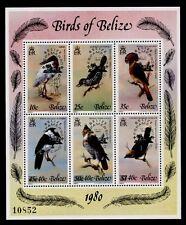 Belize 502 MNH Birds, ESPAMER o/p