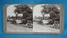 WW1 Stereoview Royal Field Artillery Battery Rest In A Wood Realistic Travels