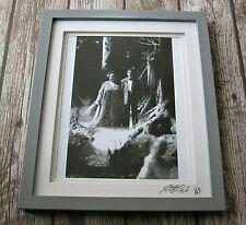 Freddie Mercury - Barcelona 1987 Exhibition Photo Print Peter Hince Signed Queen