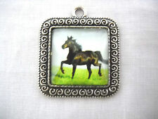 EQUINE BEAUTY STALLION HORSE GLASS CABOCHON SQUARE ALLOY BASE PENDANT NECKLACE