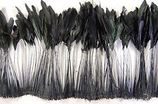 "30 Pcs BURNT COQUE FRINGE - BLACK IRIDESCENT 8-12"" Tall Feathers; Pad/Hats/Trim"