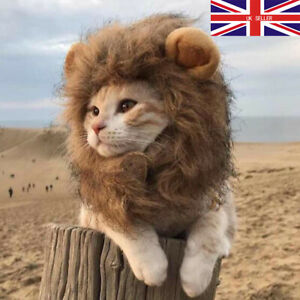 Pet cat and dog headgear lion mane wig hat cat and dog pet supplies headwear UK