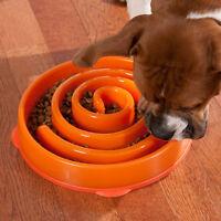 Slo Bowl Pet Dog Cat Interactive Slow Food Feeder Healthy Gulp Feed Dish Large O