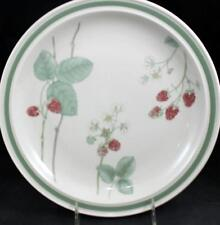 Wedgwood RASPBERRY CANE Dinner Plate Trim off Edge GREAT CONDITION