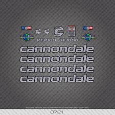 0721 CANNONDALE rt3000 Bicicletta Adesivi-Decalcomanie-trasferimenti-Argento / Nero
