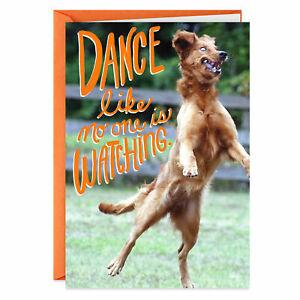 Funny Happy Birthday Dancing Dog Dances Hallmark Shoebox Greeting Card