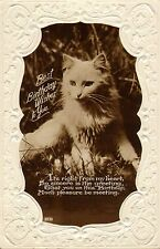 1920s or 30s  real photo postcard. best birthday wishes ! cat photo