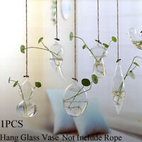 Creative Garden Supplies Glass Vase Hanging Glass Plant Pot Terrarium Container