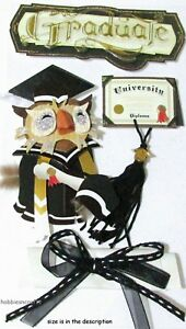 GRADUATION Jolee's Boutique 3-D Stickers Graduate Owl Diploma College Student